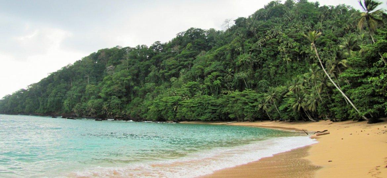Sao_Tome_Praia_Inhame_14_(16247212021)